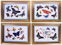Chinese Export Watercolours on Pith Paper, set of twelve Butterflies