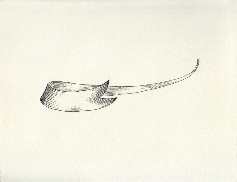 Renato Garza Cervera Abstract Drawing - Extremely Long Motto