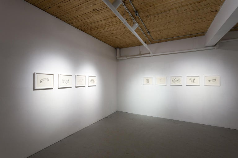 Through processes like transgression, confrontation and hybridization Renato Garza Cervera's work questions and generates a series of reflections upon contemporary culture and related themes of political, social and aesthetic nature. By reviewing