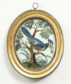 A George III Embossed Card Oval Picture of a Blue Jay