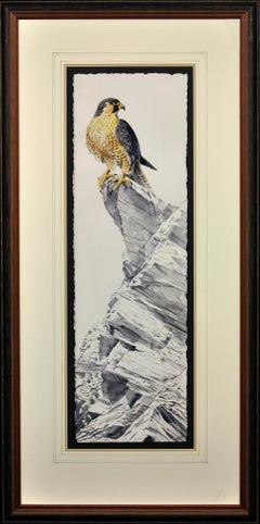 Gray Phase Gyrfalcon. Bird of Prey. Long Rectangular Portrait. Grey Plumage.