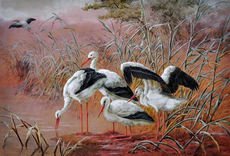 White Storks. Large European African Asian Bird.Victorian Watercolor Ornithology - Art by Harry Bright