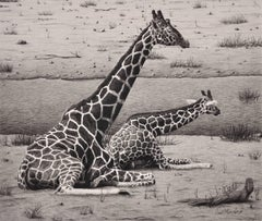 Giraffes – Cow and Calf. Original Wildlife Drawing. Animal. African Landscape.
