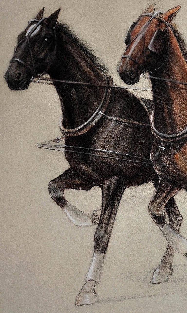 Trotting Horses Harnessed to a Lightweight Fly. Cecil Aldin. Original Drawing. For Sale 15