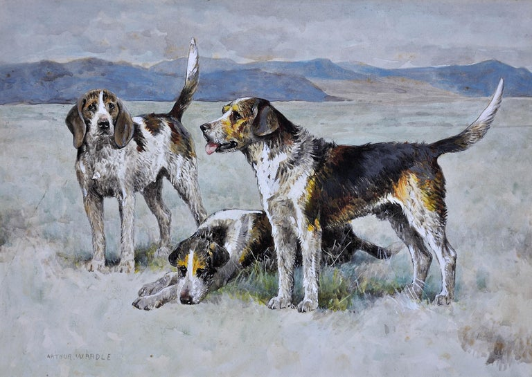 Welsh Hounds from the Packs of Lieutenant Buckley & the Honourable H.C. Wynn. - Art by Arthur Wardle
