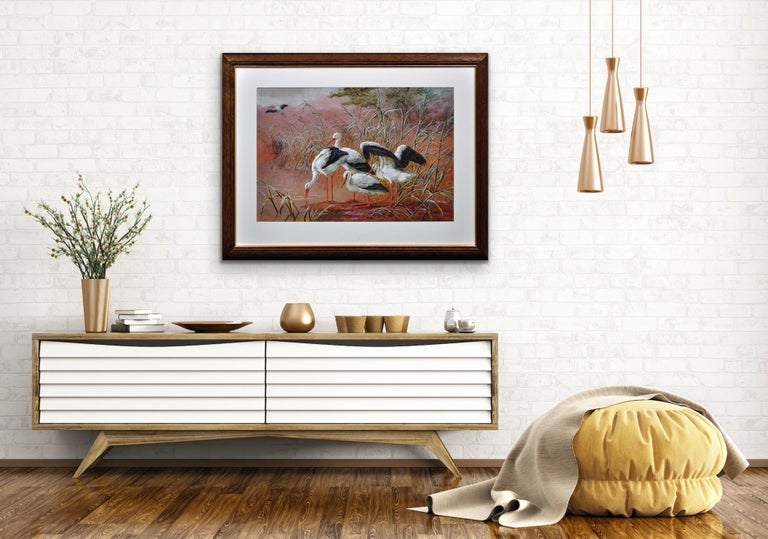 White Storks. Large European African Asian Bird.Victorian Watercolor Ornithology For Sale 14