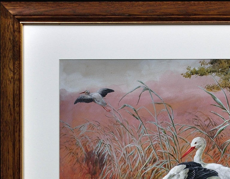 White Storks. Large European African Asian Bird.Victorian Watercolor Ornithology For Sale 15