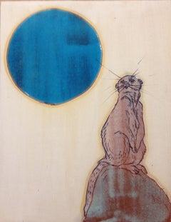 Meerkat Moon