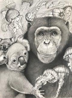 Chimp and Koala