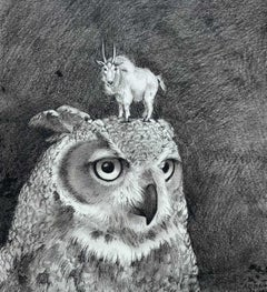 Owl and Goat