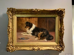 English early 20th century Portrait of a seated Collie dog