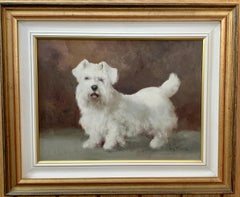 Portrait study of a West Highland White Terrier or Westie, white puppy or dog