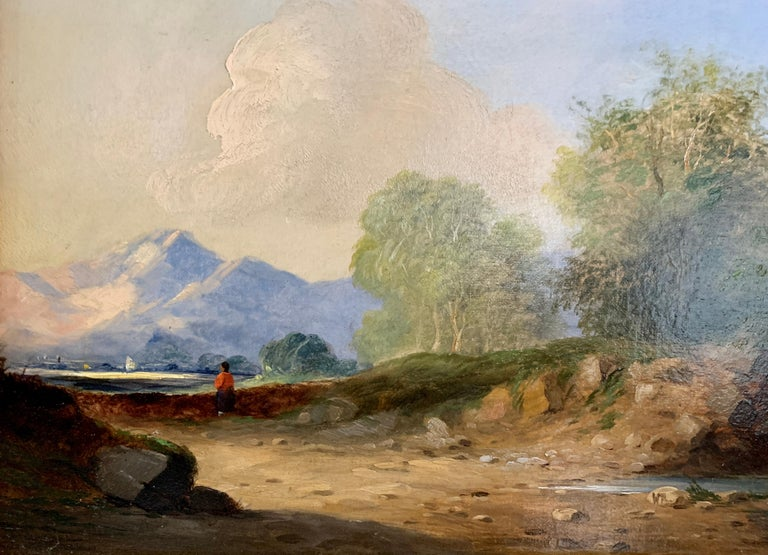 Landscapes with trees, pair of English or Irish 19th century landscapes For Sale 2