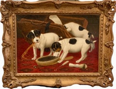 English interior of Jack Russell puppy dogs playing with a mans vanity case