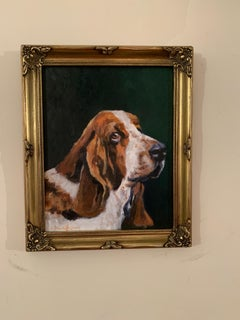 English Bassett Hound dog portrait