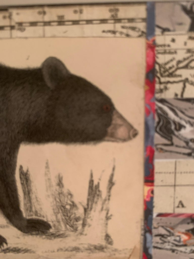 American flag collage with a 19th C hand colored engraving of a bear For Sale 6