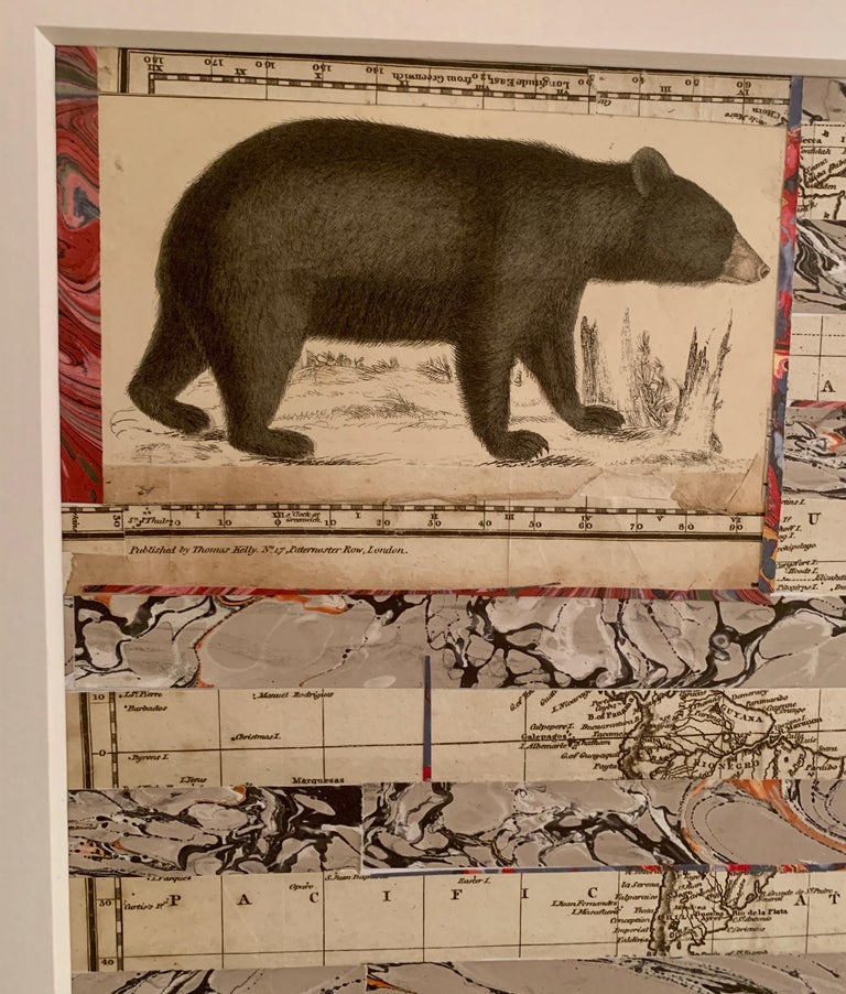 American flag collage with a 19th C hand colored engraving of a bear For Sale 1