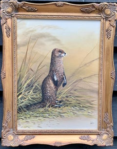 Portrait of an English Brown and White Otter, on the banks of a River Landscape