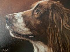 Springer Spaniel Dog portrait, original English Dog oil painting listed artist