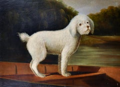 Portrait of a White Poodle standing in Wooden Punt on river, Large Oil Painting