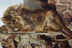 Victorian Oil - the Sleeping Lion - Fine Portrait of a Resting Lion