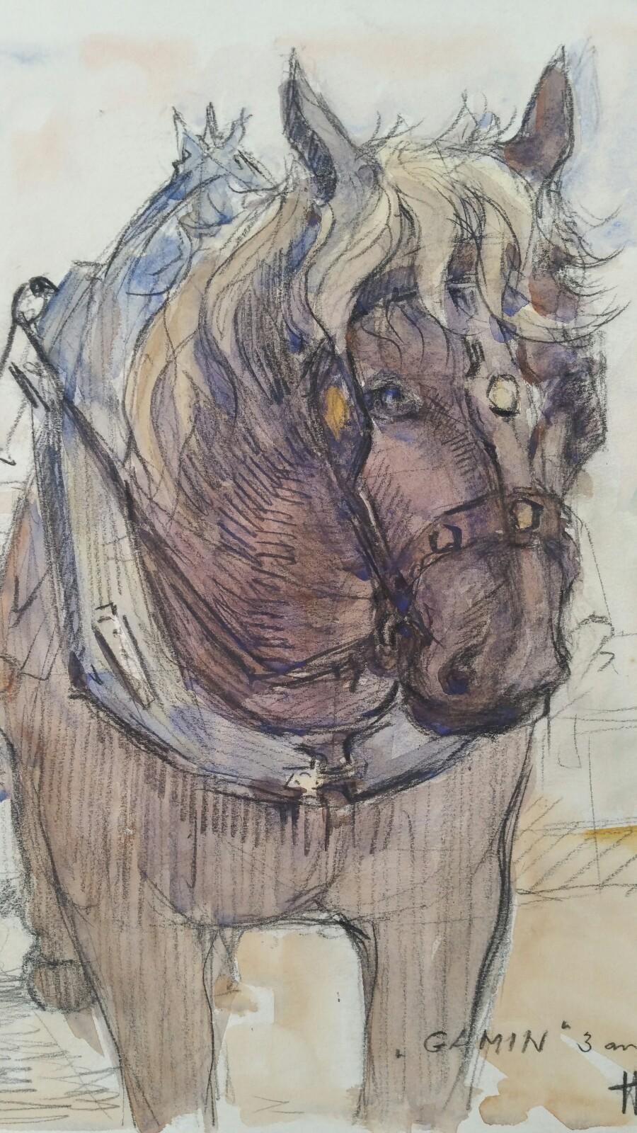 Ecole de Paris Mid 20th Century Equine Carthorse Portrait