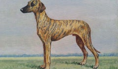 English School 20th Century Oil Painting of a Champion Sloughi Dog