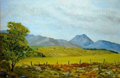 Mourne Mountains County Down Ireland Signed Original Oil Painting