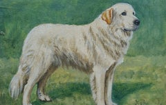 English School Mid 20th Century Oil Painting Pyrenean Mountain Dog