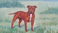 English School Mid 20th Century Oil Painting Staffordshire Bull Terrier Dog