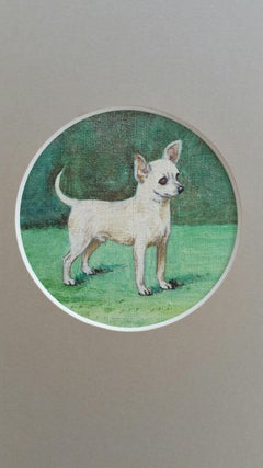 English School Mid 20th Century Oil Painting Chihuahua Dog Painting