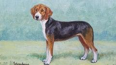 English School Mid 20th Century Oil Painting: Hamiltonstovare Hound Dog