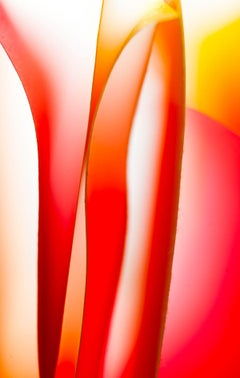 Summer Flute - Abstract Contemporary Photograph - Giclee on Fine Art Paper