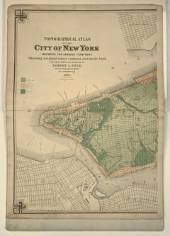 Viele Topographical Map of City of New York (1874)