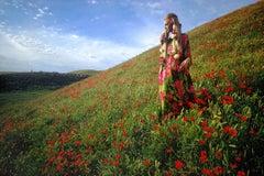 Afghanistan: Poppies near Kunduz