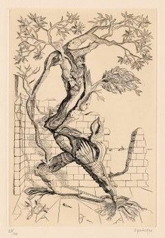 Arbre-Homme (Tree-Man) —Mid-Century Surrealism
