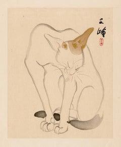 Cat (Neko)