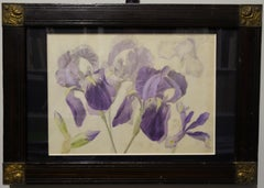 """purple iris"" botanical study 1850    watercolor and pencil  cm. 30 x 20"