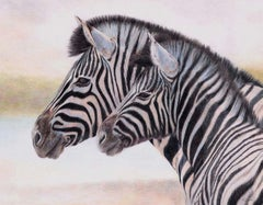 An original, contemporary wildlife drawing of zebra in coloured pencil on paper