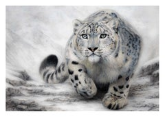 An original drawing of a snow leopard by British born artist Charlotte Williams