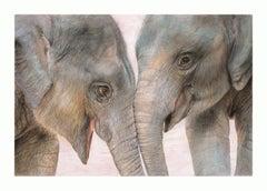 Original hand drawn work of elephants by British born artist Charlotte Williams