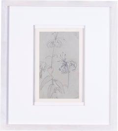 Pre-Raphaelite drawing of lilies by Evelyn de Morgan, 20th Century British