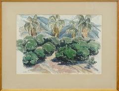 Mid Century Palm Springs Landscape