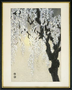 Asian Nocturnal Cherry Blossoms