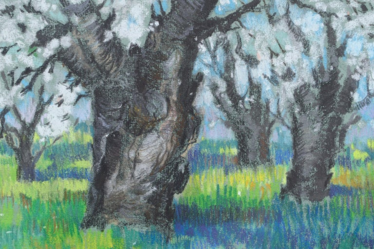 Serene and colorful pastel drawing of cherry trees in blossom by Therese Nolan Krassowski (20th Century). Signed by the artist in the lower left corner. Presented in a wood frame with a linen fillet and anti-reflective plexi-glass. Image size: