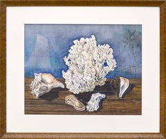 Seashells and Coral Still Life