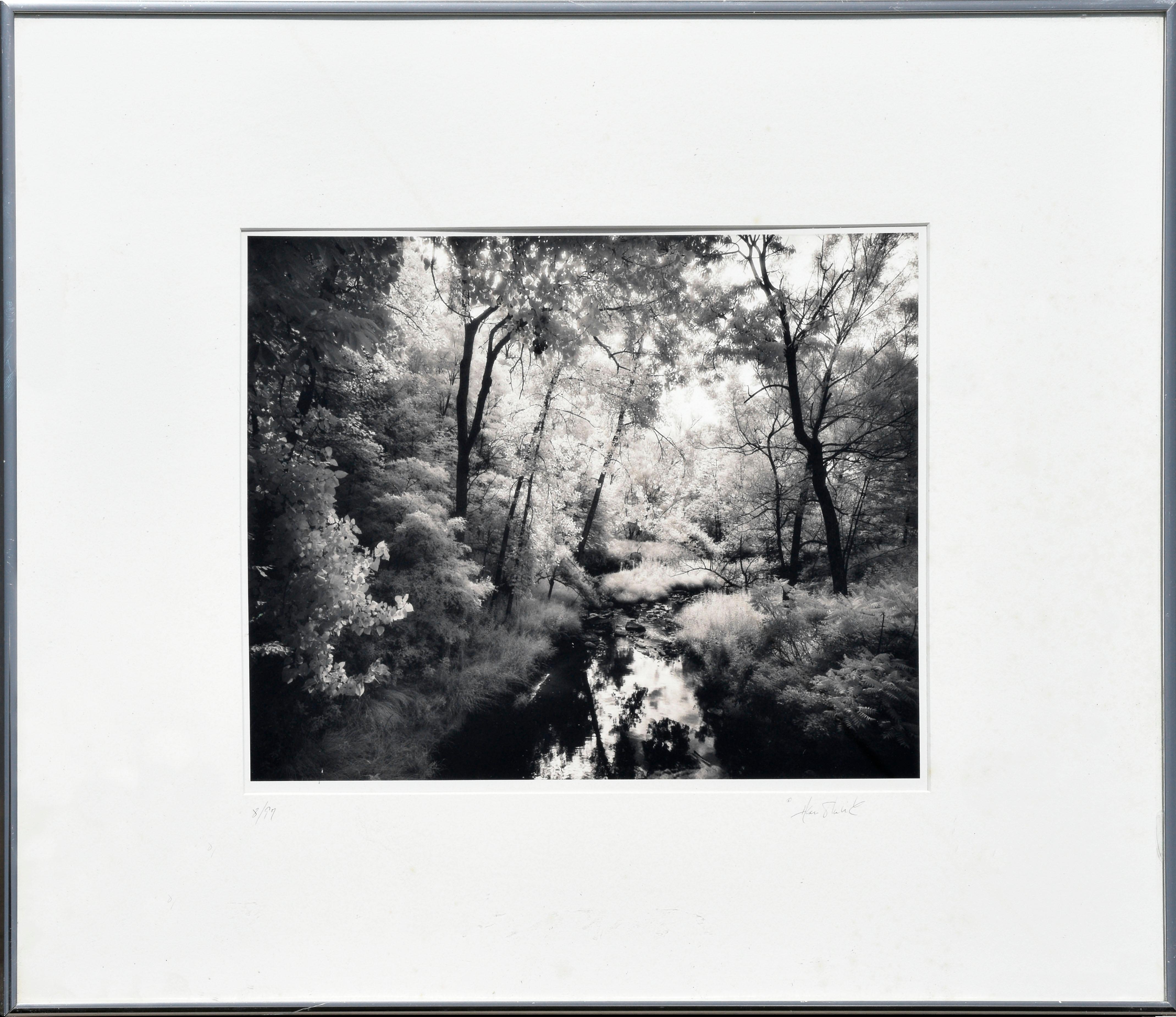 Saratoga Battlefield Creek - Signed Black & White Landscape Photograph