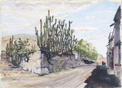 Cacti on a Mexican Street - Landscape
