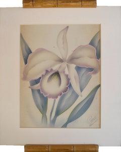 Hawaiian Orchid Watercolor Floral Study Honolulu Airbrush artist
