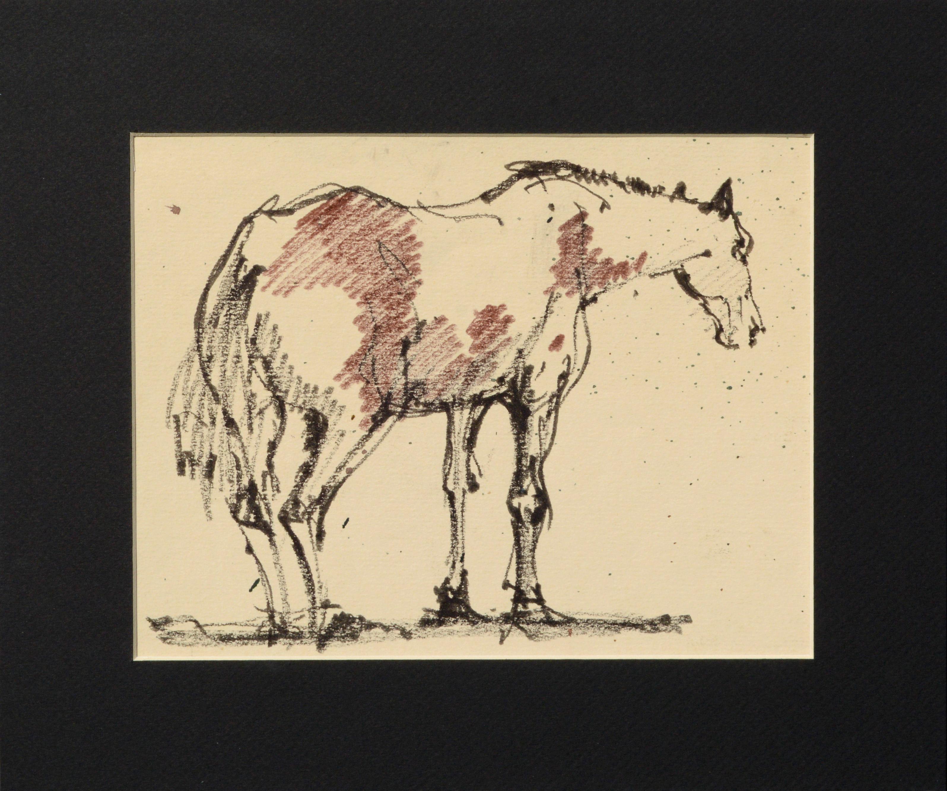Mustang Horse Drawing